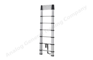 Aluminum Silver Telescopic Ladder